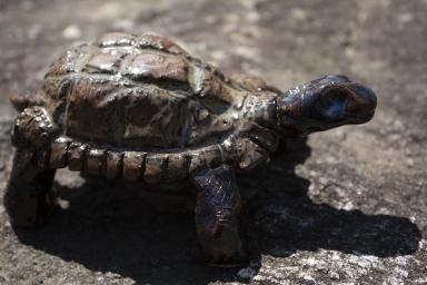 turtle-sculpture2